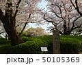 横浜・山手公園 50105369