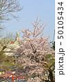 横浜・山手公園 50105434