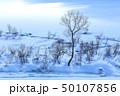 冬日 冬の雪面 50107856