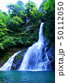 増水した飛龍の滝 50112050