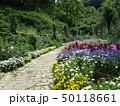 植物園の遊歩道 50118661