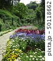 植物園の遊歩道 50118662