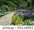 植物園の遊歩道 50118663