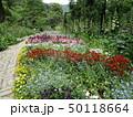 植物園の遊歩道 50118664