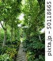 植物園の遊歩道 50118665