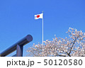 【東京都】靖国神社の桜 国旗 50120580