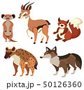 Different types of wild animals on white 50126360