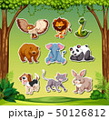 Set of animal sticker 50126812