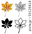 Set of plant Leaf 50126818