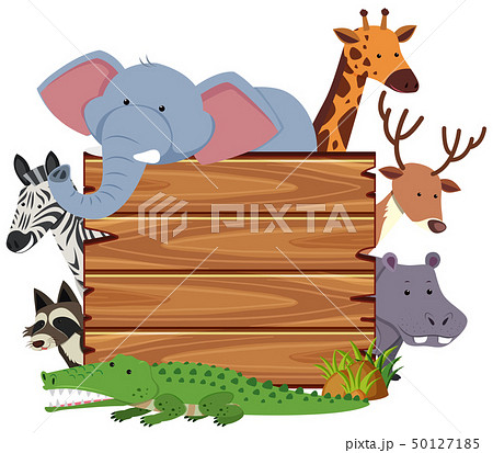 Blank board with cute animals 50127185