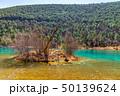湖 湖上 一湖の写真 50139624