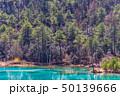 湖 湖上 一湖の写真 50139666
