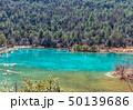 湖 湖上 一湖の写真 50139686
