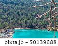 湖 湖上 一湖の写真 50139688