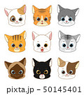 Cute Smiling Cat Head Collection Set 50145401