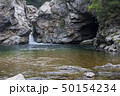 石 岩 グー 50154234