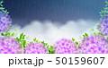 紫陽花 梅雨 雨のイラスト 50159607