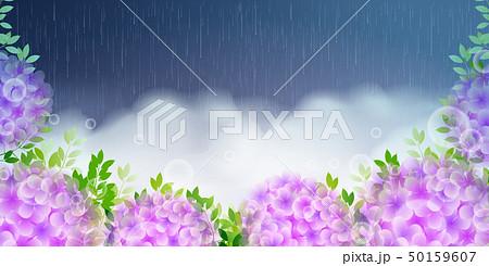 あじさい 花 梅雨 背景 50159607