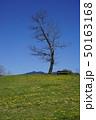 津山市にある公共公園「グリーンヒルズ」 50163168