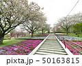 静峰ふるさと公園 50163815