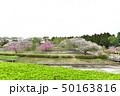 静峰ふるさと公園 50163816