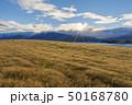 ニュージーランドの街 テカポ 50168780