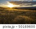 ニュージーランドの大自然 夕暮れ 50169600