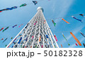 都市風景 東京スカイツリーと鯉のぼり 50182328