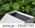 イメージ素材、箱、階段、雲、空、白、黒、立体、空間、新緑 50187795