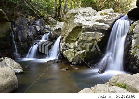 尼ン滝(兵庫県三田市) 50203360