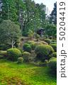 東福寺の日本庭園 50204419