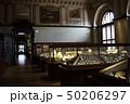自然史博物館(無人の館内) 50206297
