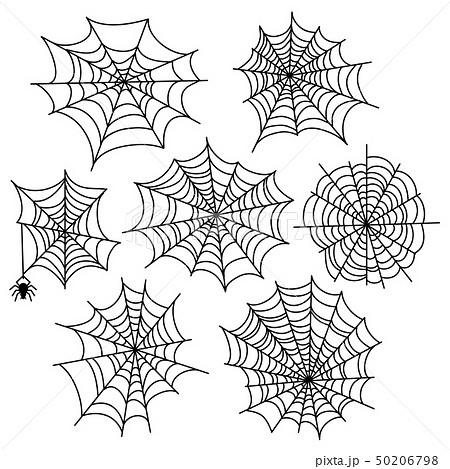 Halloween spider web vector set. Cobweb decoration elements isolated 50206798