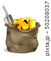 bag and gold 50208037