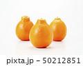 ミネオラオレンジ オレンジ フルーツの写真 50212851