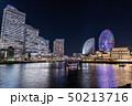 横浜 みなとみらい 夜景の写真 50213716