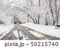 景色 風景 樹木の写真 50215740