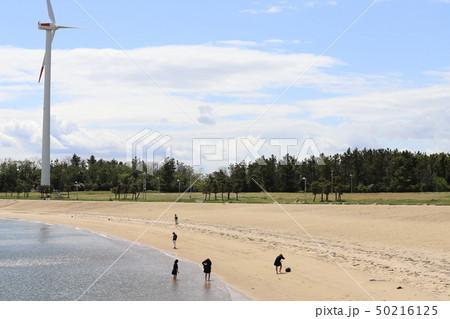 新舞子マリンパーク ブルーサンビーチ 春 水遊び 50216125