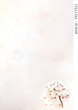 桜 ソメイヨシノ 春 イメージ 50217921