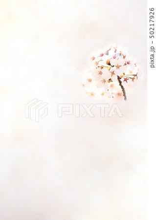 桜 ソメイヨシノ 春 イメージ 50217926