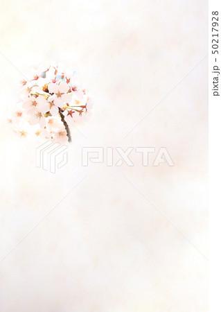桜 ソメイヨシノ 春 イメージ 50217928