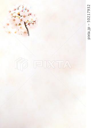 桜 ソメイヨシノ 春 イメージ 50217932