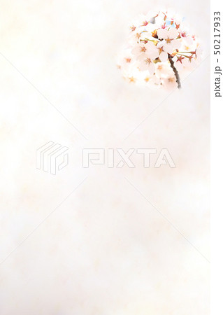 桜 ソメイヨシノ 春 イメージ 50217933