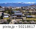 信州 長野県松本市、国宝松本城の桜と北アルプス 50218617