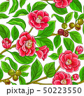 camellia vector pattern 50223550