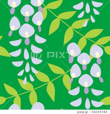 パターン 花柄 藤 グリーン 緑色 50244784
