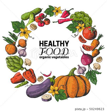 Hand drawn vegetables frame. Fresh organic food, vegan garden menu, eco health poster with sketch 50249623