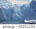 Beautiful view of icebergs in Antarctica 50251150