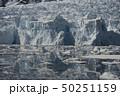Beautiful view of icebergs in Antarctica 50251159