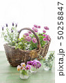 花とバスケット 50258847